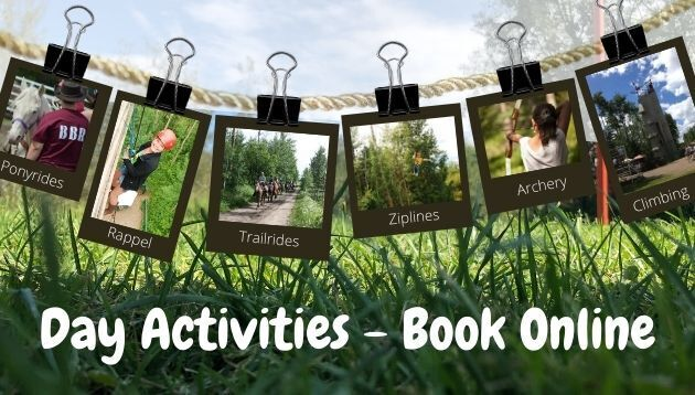 Book your day activity today